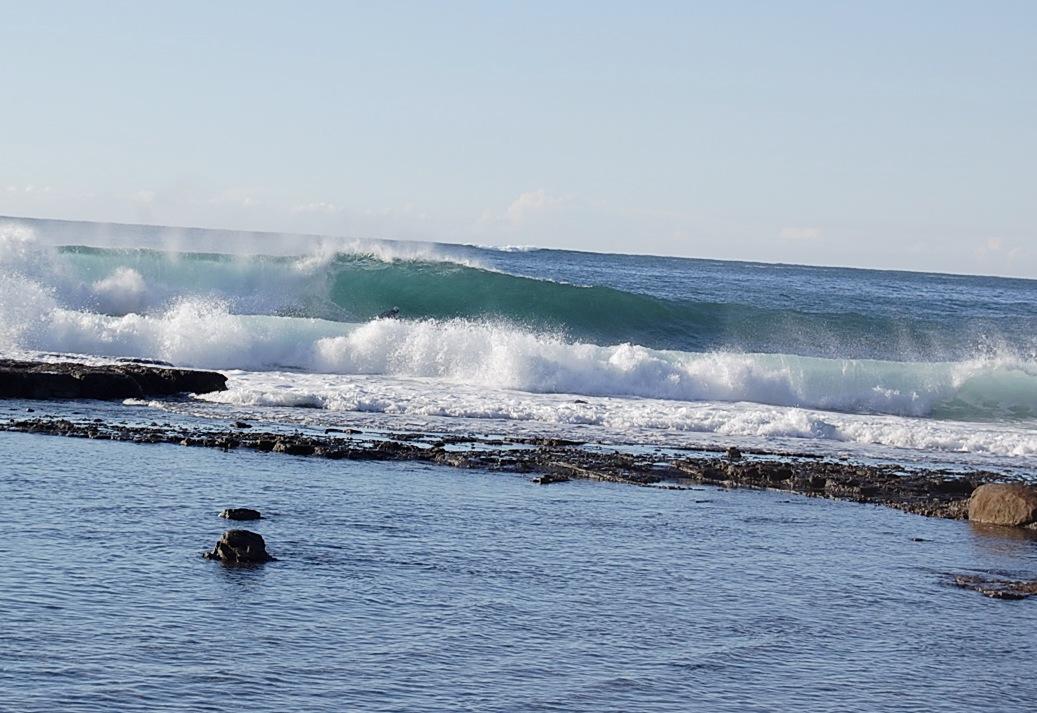 A reef slab somewhere in NSW, Australia.