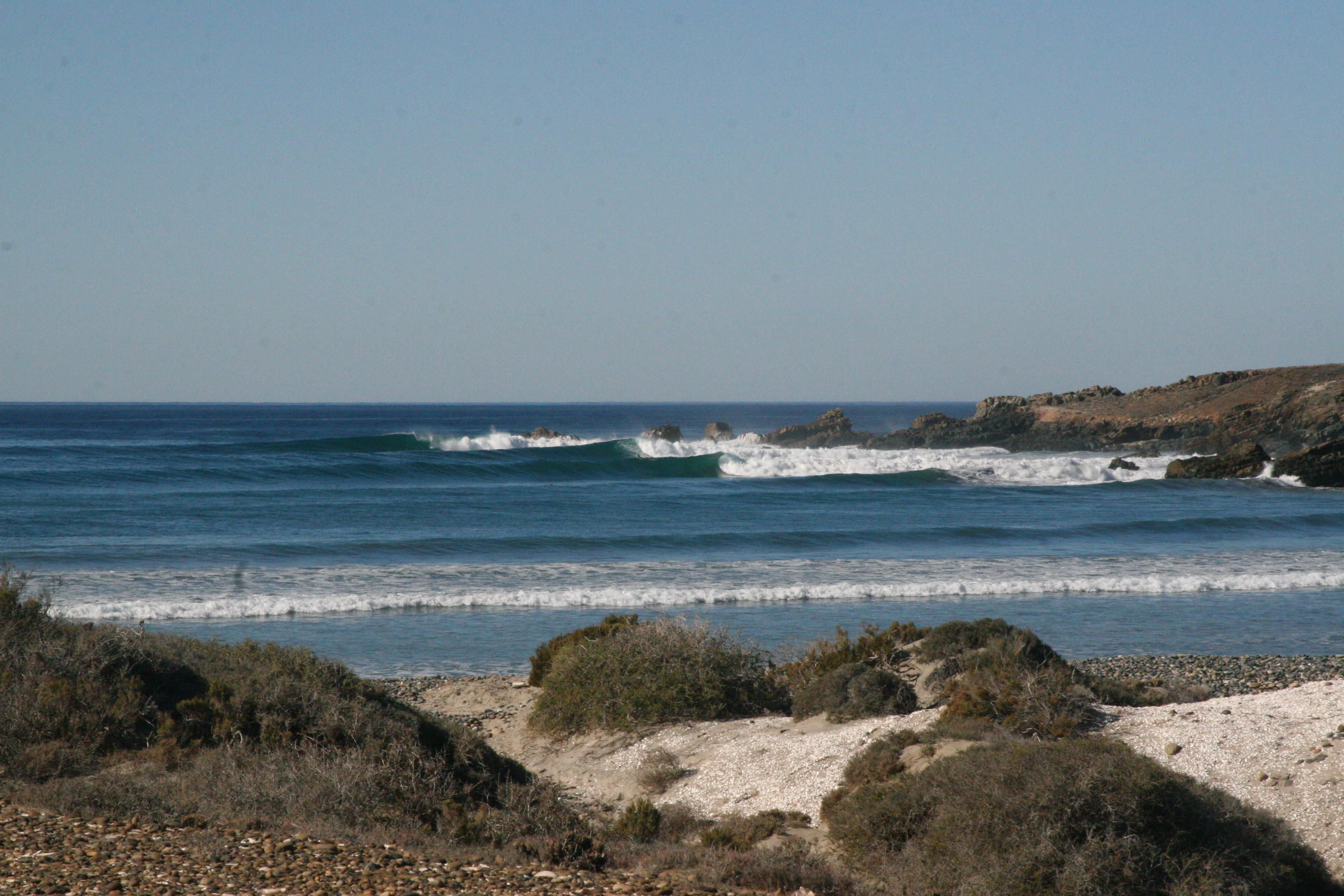 Surf And Turf The Baja Renaissance Sergededina