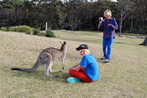 australia-066