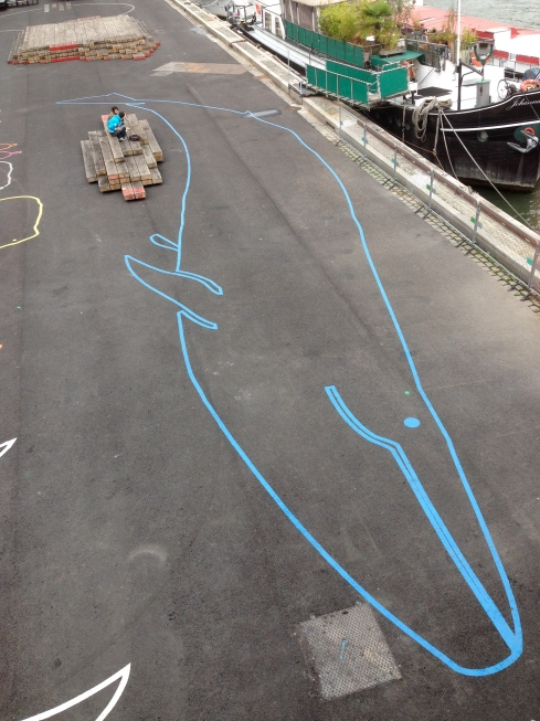 A blue whale on the Seine.