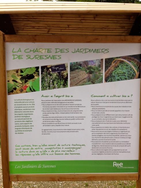 Community gardens at the edge of Paris in Suresnes.