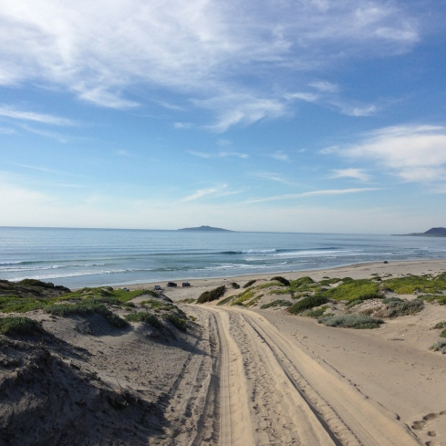 The beach at San Quintin. These dunes have been preserved by Terra Peninsular.