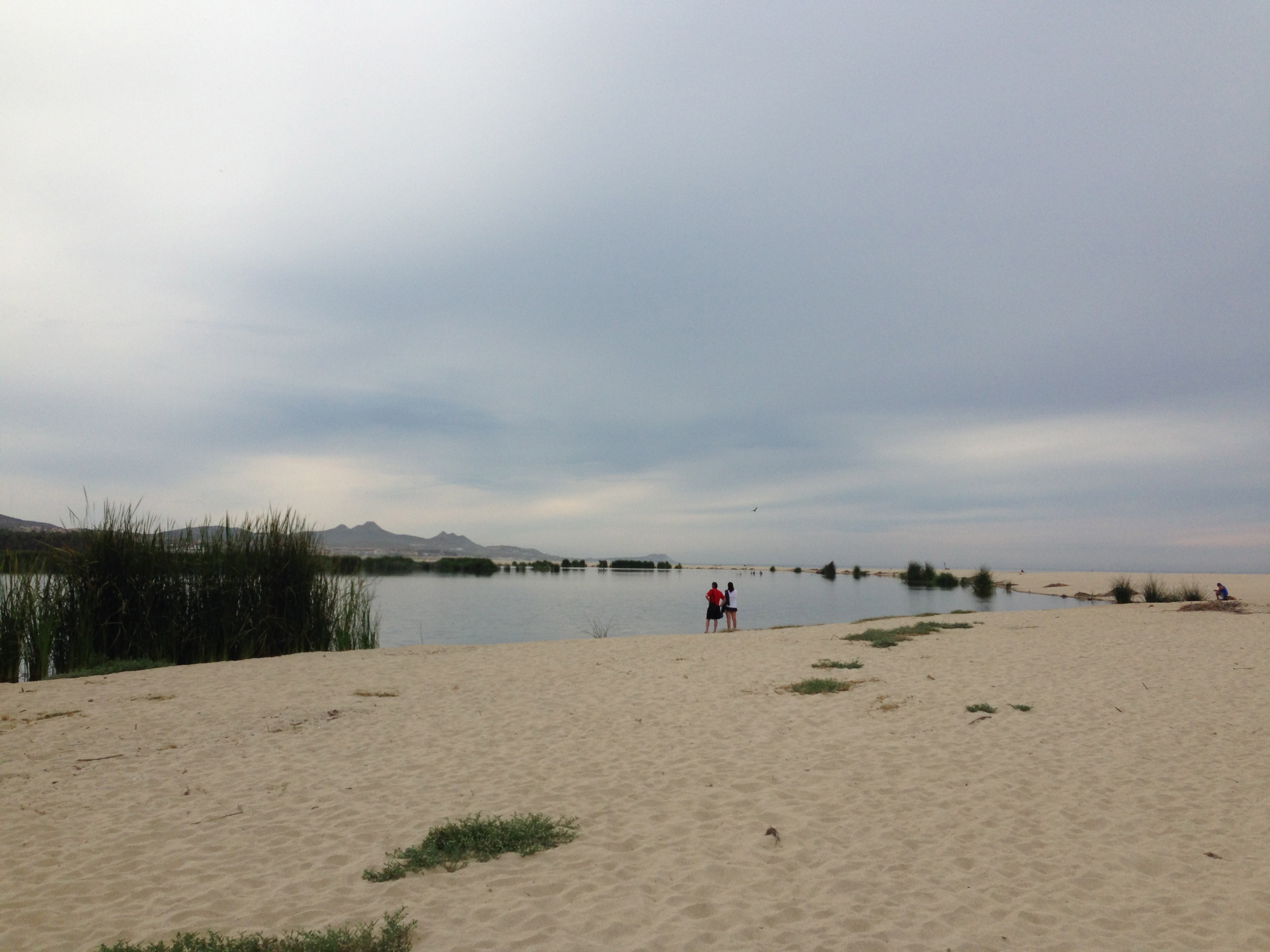 Img Lifeguard Championships Cape May